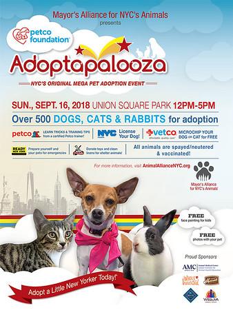 Adoptapalooza Graphics