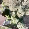DCIM\100MEDIA\DJI_0429.JPG