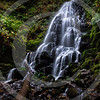 Fairy Falls is located at the Wahkeena Canyon area of the lovely Colombia George Wilderness. The trail starts with some beautiful stonework and a wooden bridge over Wahkeena Creek. The trail to the left leads to Multnomah Falls and the one to the right leads to the Fairy Falls and beyond. Wahkeena Falls and the overflowing creek might not be as popular as the near by Multnomah Falls, but let that not fool you. The Fairy falls is one of the much smaller falls in the George, but is brilliantly beautiful. Even at just 20 feet, the stepped formation creates such a dreamy flow. It is a wonder to watch and just get lost with.