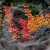 Volcanic Fall Colors