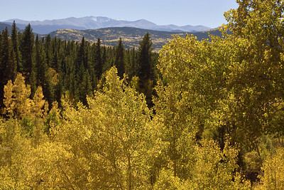 """""""Colorado Colors""""  Colorado  There is no place I would rather be in the Fall than Colorado.  Acres of hill and mountainside burn witih color as the Aspen trees turn their leaves.  It literally takes your breath way to see it. Technical Details: Shot with a Canon 5dMk2 and 20mm lens."""