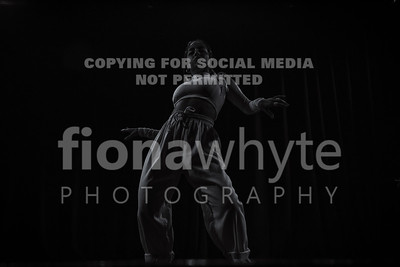 Dancers Delight-7437BW