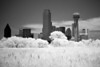 Infrared picture taken of Downtown Dallas from the middle of the Trinity River levee.