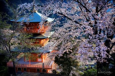 Nachi Temple, Japan 3