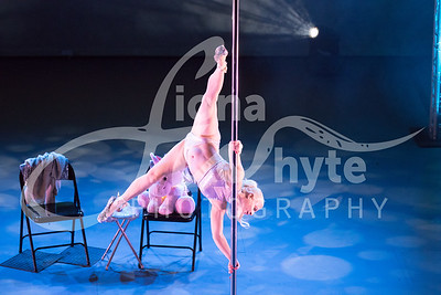 Miss Pole Dance UK 2017-5447