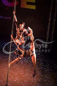 Miss Pole Dance UK 2017-4642