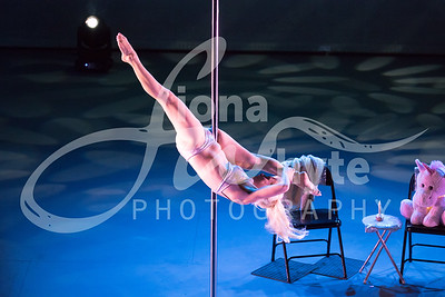 Miss Pole Dance UK 2017-5484