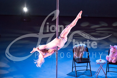 Miss Pole Dance UK 2017-5486