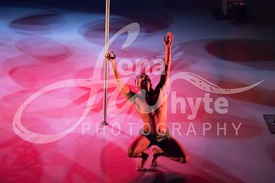 Miss Pole Dance UK 2017-4129