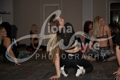 Miss Pole Dance UK 2017-5562-2