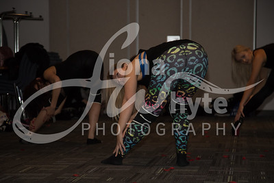 Miss Pole Dance UK 2017-5539-2