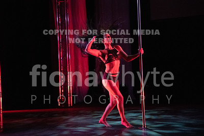 Miss Pole Dance UK-5948