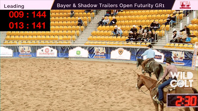 14. PRESARIO - Pete Kennedy - 2015 NCHA Open Futurity GR1 - Wild Colts