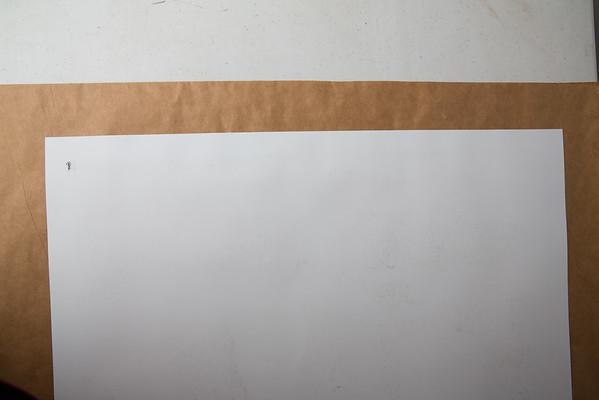 White Stripes Unframed
