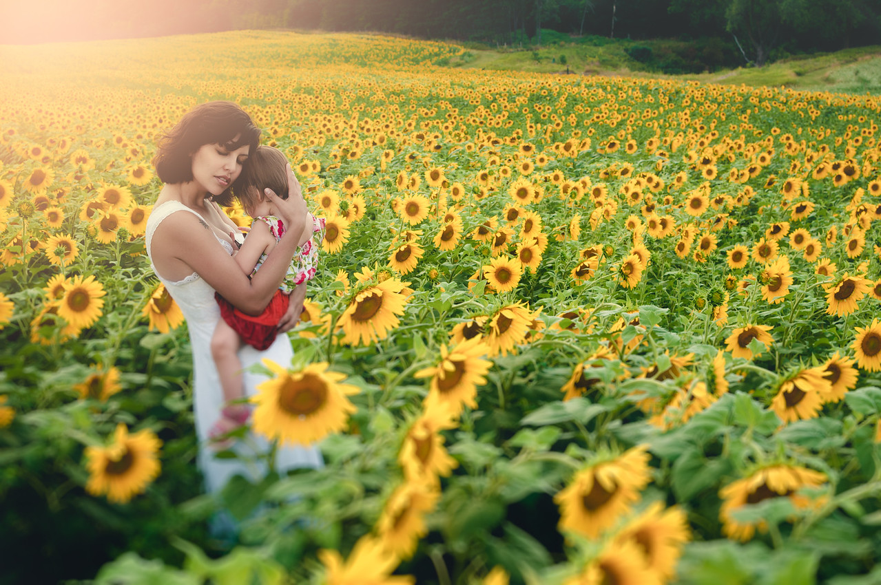 Fields of Love