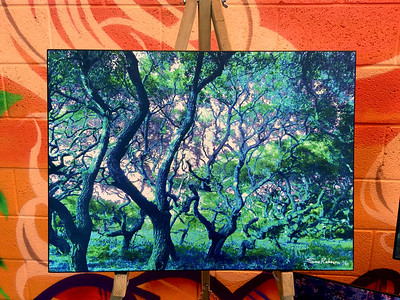 "$150...18""x 13""...87_3876 Light Sapphire...canvas on masonite"