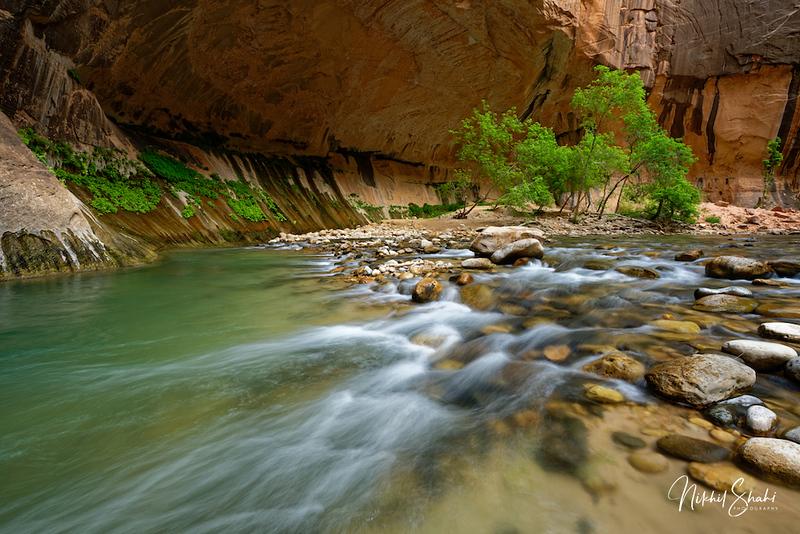 The Narrows, Zion National Park, Utah, USA
