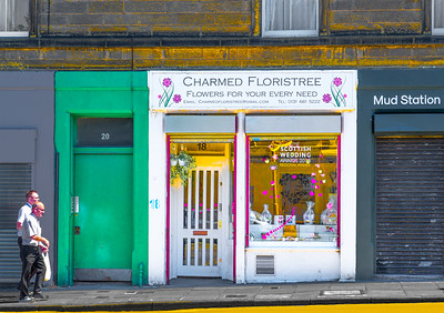 'Charmed Floristree,' Montrose Terrace, Edinburgh, Scotland, 2018