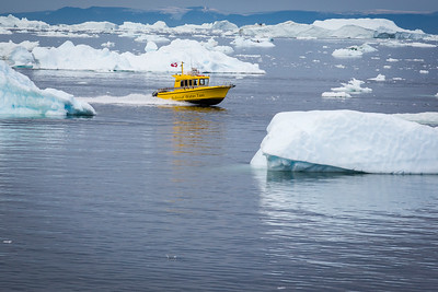 Yellow water taxi plys the icefjord near illulissat