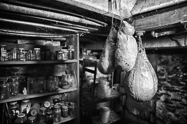 Vintage boxing gloves hanging in a basement outside of Freeport, Ilinois. Photograph by Ryan Davis - Rockford Photographer
