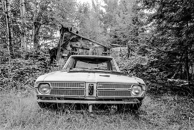 Abandoned Plymouth near Misery Bay, MI