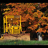 16x20  Bulldozer against a backdrop of turning leaves