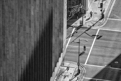 flower and or wilshire - 2014