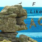 """""ar Miniounok""  -  Rocher du sphinx  -  Ile de Sein  -  Bretagne"