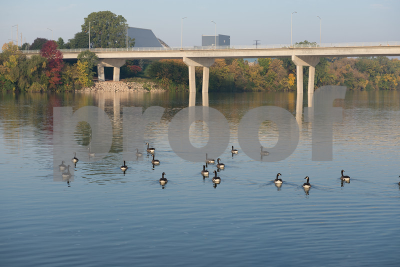 KM1407 - Geese on Fox River