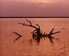 sunset1b