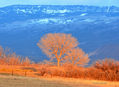 In Grand Junction - the Mesa is beautiful.
