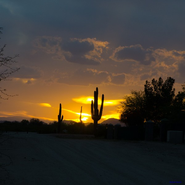 Arizona at Sundet