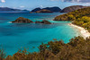 Trunk Bay - St. John - USVI v2