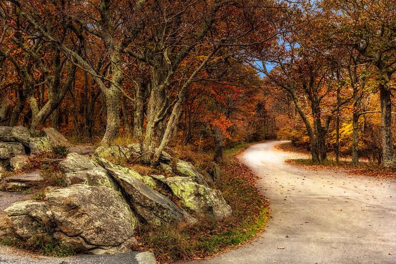 Fall - Skyline Drive v2