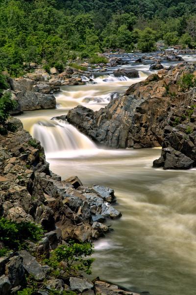 Great Falls VA - Portrait - Summer