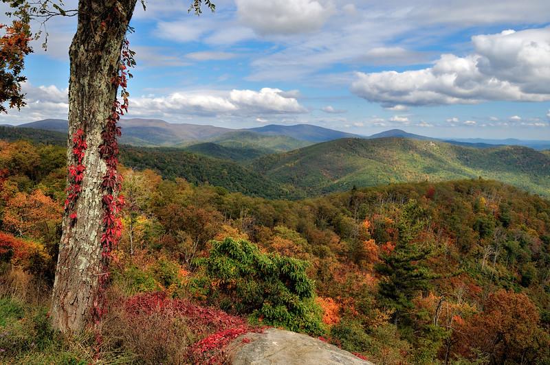 Skyline Drive View - Virginia