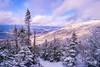 Algonquin - Adirondack Mountains
