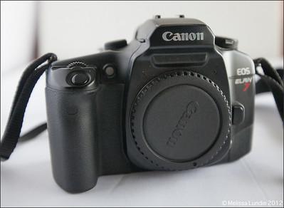 Canon Elan 7 - $100