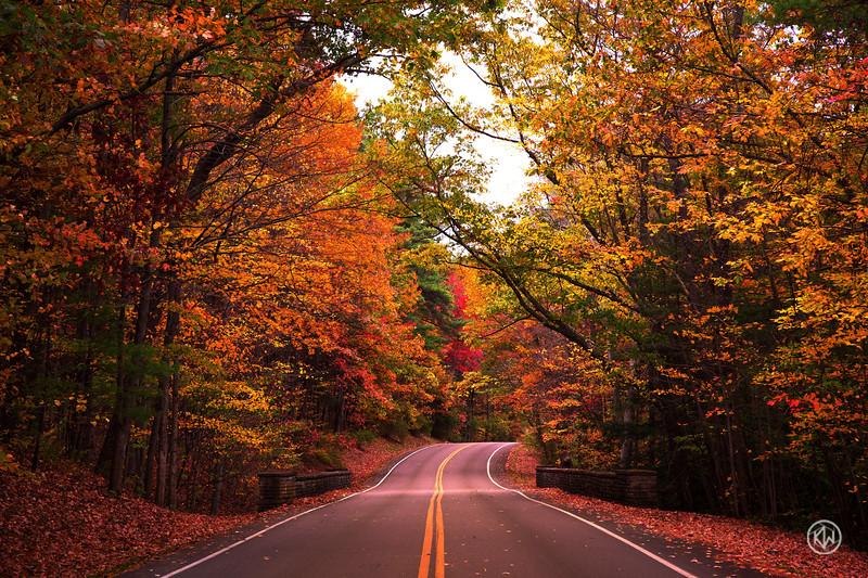 Autumn Road — Letchworth State Park