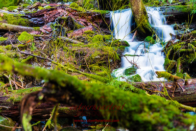 A serene little fall on the way to Snoquera Falls. www.cutyerheartout.com