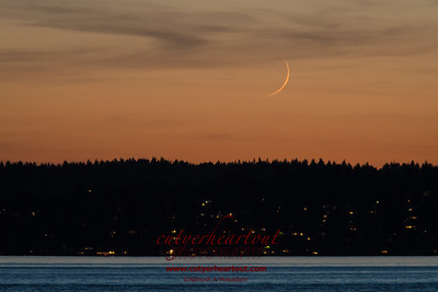 New Moon Setting