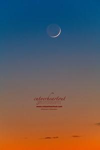 New New Moon!