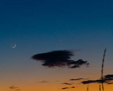 New Moon, Venus, Mercury