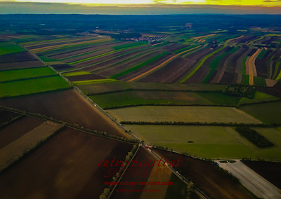 The fields taking off from Vienna were so rich and colorful! Looks like a painting! www.cutyerheartout.com