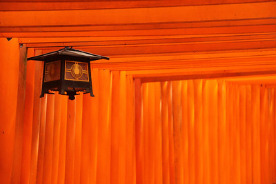 Lantern In The Belly Of The Sun Kyoto, JP  I have this picture framed in my living room and it's by far one of my personal favorites.