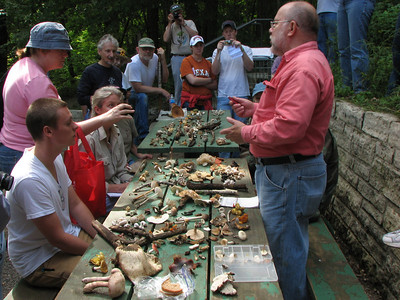 Everyone listens when Dean describes how to identify mushrooms.