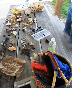 One of the table full of finds.