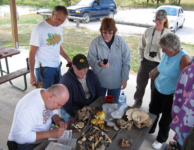 People gather around Dean to learn about fungus as the table of fungus is sorted through.