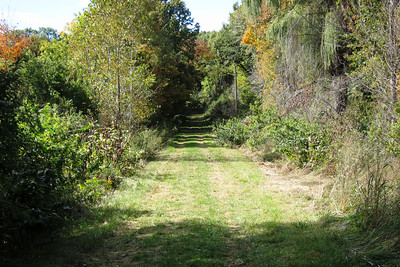 The path to Wickiup Hill Natural Area.