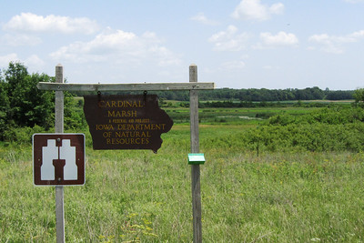 Cardinal Marsh Wildlife Management Area. The conditions were bone dry.